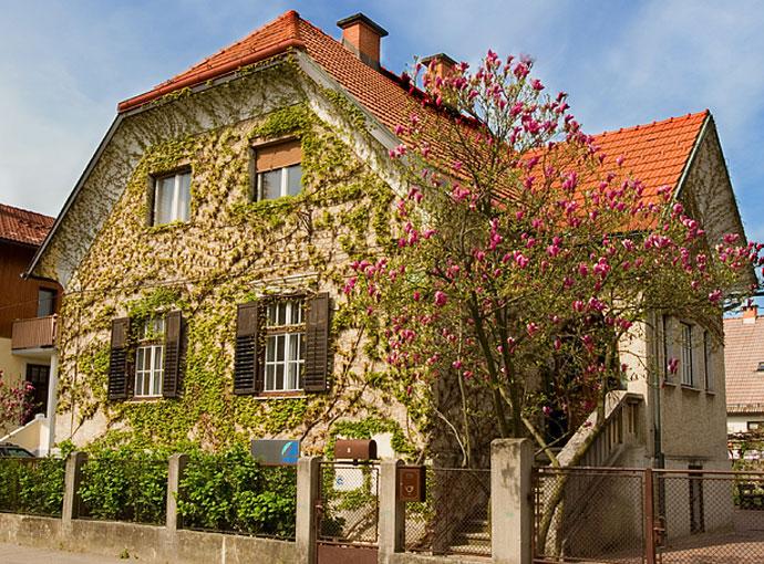 Hiša - pomlad