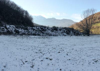 Plav, Črna gora