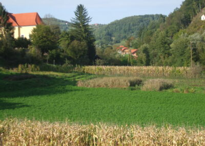 Podsreda, Slovenija