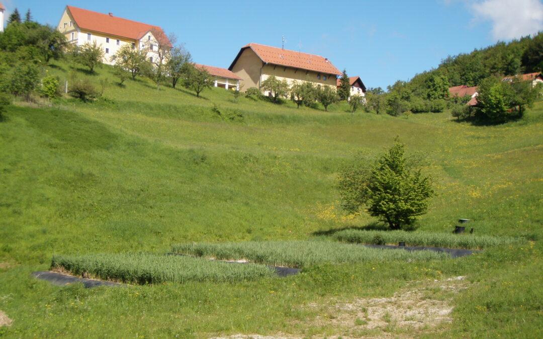 Dobje, Slovenija