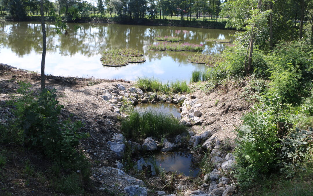 Ekoremediacijski ukrepi za gramozno jamo Kamešnica